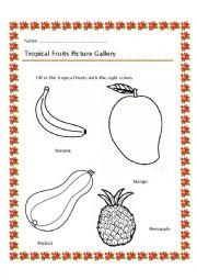 English Worksheet: Tropical fruit - Color