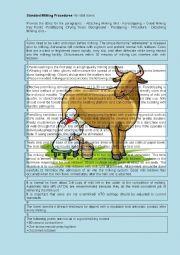 English Worksheet: Standard Milking Procedures