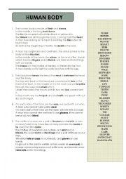 English Worksheet: HUMAN BODY