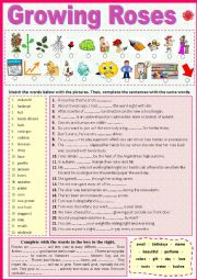 English Worksheet: Growing Roses