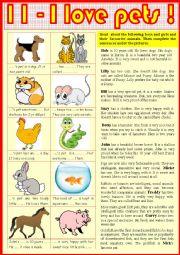 English Worksheet: 11. I love pets !