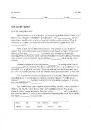 English Worksheet: Your Digestive System