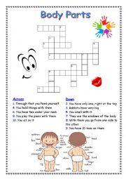 English Worksheet: Body parts crosswords