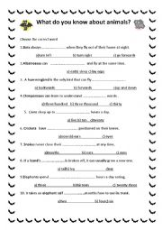 English Worksheet: What do you know about animals? Test with key.