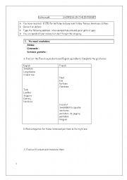 English Worksheet: SHOPPING ON THE INTERNET