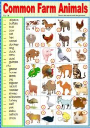 English Worksheet: Common farm animals. Matching ex + key