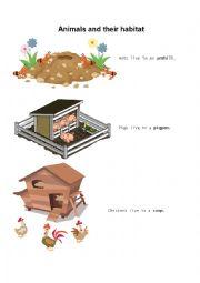 English Worksheet: animals and their habitat