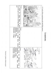 English Worksheet: Ecosystems practice