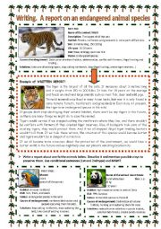 english worksheets writing a report on an endangered animal species. Black Bedroom Furniture Sets. Home Design Ideas