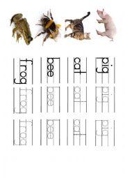 English Worksheet: Animal handwriting