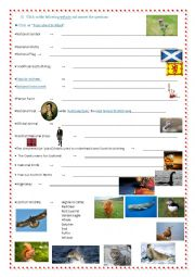 English Worksheet: Webquest - Scotland part 3