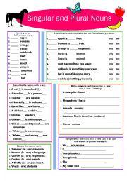English Worksheet: Singular and Plural Nouns
