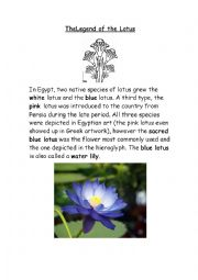 English Worksheet: The Legend of the Lotus