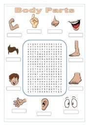 Parts of Body Wordsearch