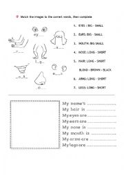 English Worksheet: body parts, personal descriptions