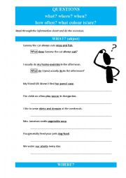 English Worksheet: questions WHAT + WHERE + WHEN + HOW OFTEN + WHAT COLOUR IS/ARE
