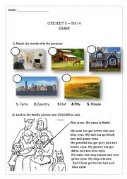 English Worksheet: CRICKET EXAM - Physical description, adjectives, places to live, family ...