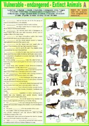 English Worksheet: Vulnerable - Endangered - Extinct animals - A. Complete + KEY