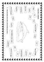 English Worksheet: Describe a dolphin.