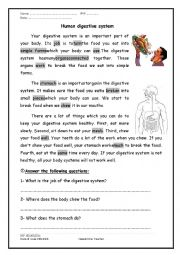 English Worksheet: A reading comprehension passage about the digestive system