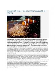 English worksheet: Anemonefish dads do almost anything to support offspring
