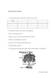 English Worksheet: Let�s talk about trees