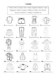 English worksheet: Clothes & Accessories