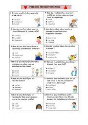 English worksheet: Feelings & Emotions Test