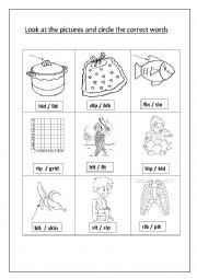 English worksheet: circle the correct word