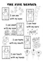 English Worksheet: The five senses