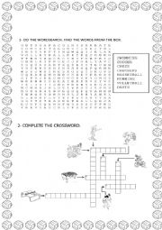 English Worksheet: Sports - Wordsearch and crossword