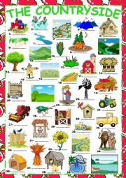English Worksheet: The Countryside (Vocabulary) + KEY
