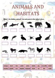 English Worksheet: ANIMALS AND HABITATS
