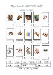Animals body vocabulary