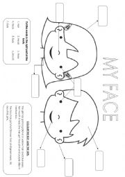 English Worksheet: The face