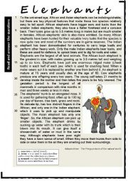 English worksheet: ELEPHANTS. Reading Comprehension. Varied questions and vocabulary work + KEY.
