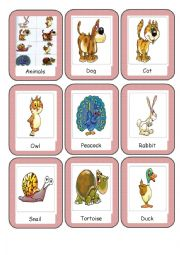 English Worksheet: animal flashcards