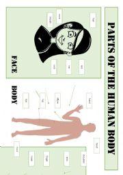 English Worksheet: Parts of the human body - vocabulary sheet
