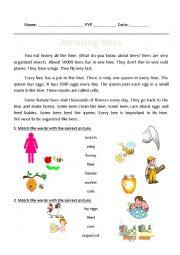 English Worksheet: Amazing bees Reading passage