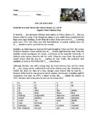 English Worksheet: Japan�s Most Famous Dog