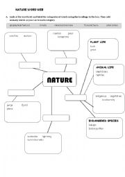 English Worksheet: Nature Mind-map
