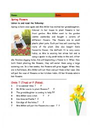 English Worksheet: Spring Flowers