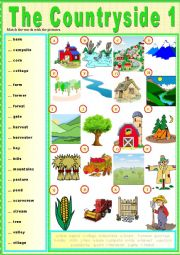 English Worksheet: The countryside 1 (Pictionary)