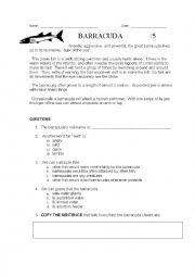 English Worksheet: Barracuda Reading Comprehension Activity