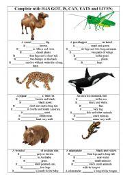 English Worksheet: Describing animals