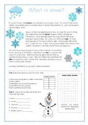 Snow Reader Activity