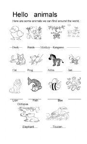 english worksheets the animals worksheets page 564. Black Bedroom Furniture Sets. Home Design Ideas