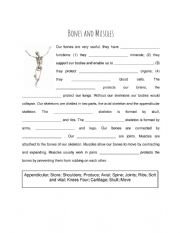 English Worksheet: Bones and Muscles