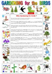 English Worksheet: GARDENING for the BIRDS. Reading comprehension + KEY