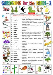 English Worksheet: GARDENING for the BIRDS - 2   Reading comprehension + KEY